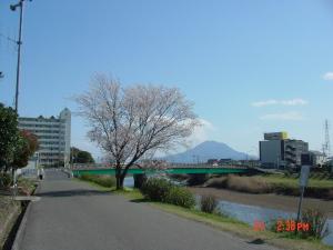 背景は国道10号線と桜島